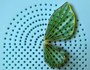 Схема крыла бабочки - капустницы